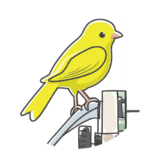 A Yellow Bird